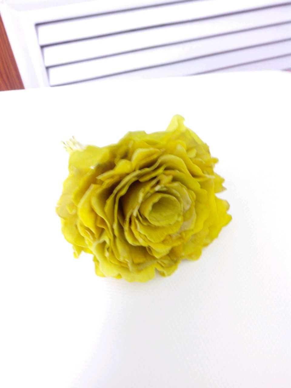"""爱心""""黄玫瑰""""! 女儿用银杏叶子给我做的,好有创意!"""